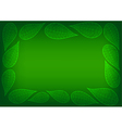 Green Leaves Spider Lace Background vector image