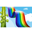 A rainbow and a tall vineplant vector image vector image