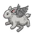 angel flying baby bunny color sketch engraving vector image