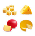 cheese realistic collection set vector image vector image