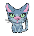 Cute cat with large eyes pet vector image vector image