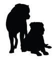 Mastif Pair vector image vector image