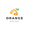orange digital logo icon vector image