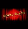 royal flush vector image