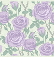 violet roses pattern vector image vector image