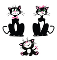 Blackly white cat lady cat and kitten vector image vector image