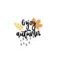 enjoy autumn days badge isolated design label vector image vector image