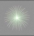 festive firework burst green color vector image