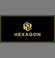 hs hexagon logo design inspiration vector image vector image