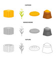 isolated object of cornfield and vegetable logo vector image