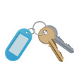 key and keychain isolate on vector image