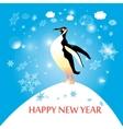 penguin winter vector image vector image