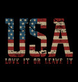 usa love it or love it - american vector image vector image