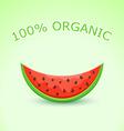 Organic Watermelon Slice vector image