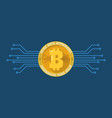 bitcoin digital cryptocurrency vector image vector image