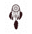 dreamcatcher with feathers ethnic art with native vector image