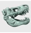 Fossilized head of a giant animal vector image vector image