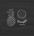 pineapple fruit graphic drawing sketch vector image