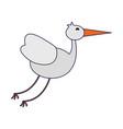 stork bird animal vector image vector image