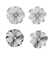 Black and white Flower lined pattern vector image