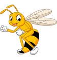cartoon bee hornet isolated on white background vector image vector image
