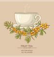 cup of buckthorn tea vector image vector image