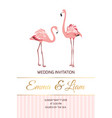 exotic pink flamingo birds couple wedding invite vector image vector image
