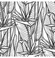 graphic strelitzia pattern vector image vector image