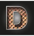old metal letter d vector image vector image