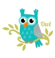 Owl isolated vector image
