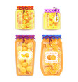 preserved fruit in jars set vector image