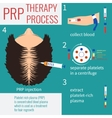 PRP injection therapy vector image vector image