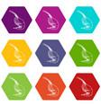 shrimp icons set 9 vector image