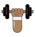 body building and gym cartoon vector image vector image