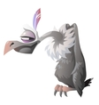 Cartoon cute vulture isolated Series characters vector image vector image