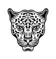 jaguar head front view in vector image