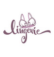 lingerie lady bra and lettering composition for vector image