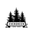 pine silhouette evergreen timberland logo design v vector image vector image