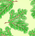 Seamless texture Conifer Spruce branch vector image