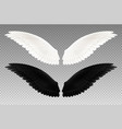 black and white wings transparent set vector image vector image