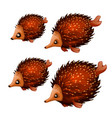 set cute aquatic animals brown color isolated vector image vector image