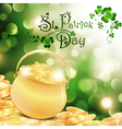 St Patrick holiday vector image