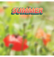 summer made geometrical shapes vector image vector image
