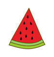 watermelon fruit template flat vector image vector image