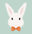 white rabbit with bow tie vector image