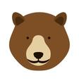 bear face icon vector image