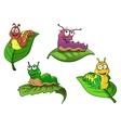 Cute cheerful cartoon caterpillars characters vector image vector image