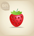 Cute fresh strawberry vector image vector image