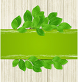 Green horizontal banner with leaves vector image vector image