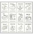 Hand drawn label set with fruits vector image